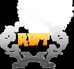 Логотип Raywell