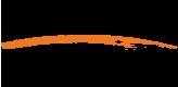 Логотип Relisan